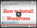 How to install WordPress within cPanel?